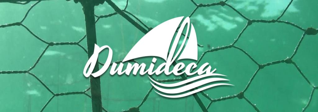 Dumideca